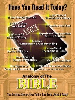 Bible Anatomy